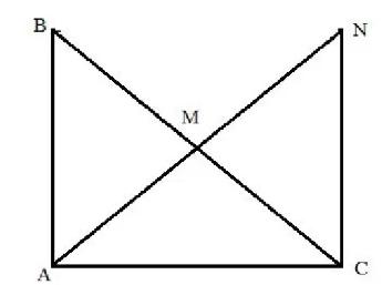 đường trunh tuyến trong tam giác đặc biệt