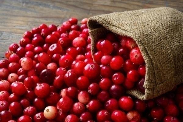 an-qua-cranberry-tuoi