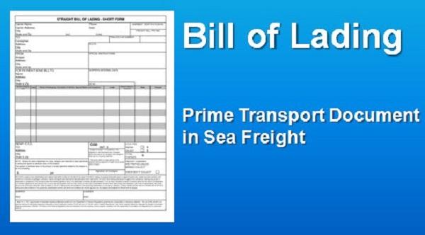 vận đơn đường biển b/l là gì