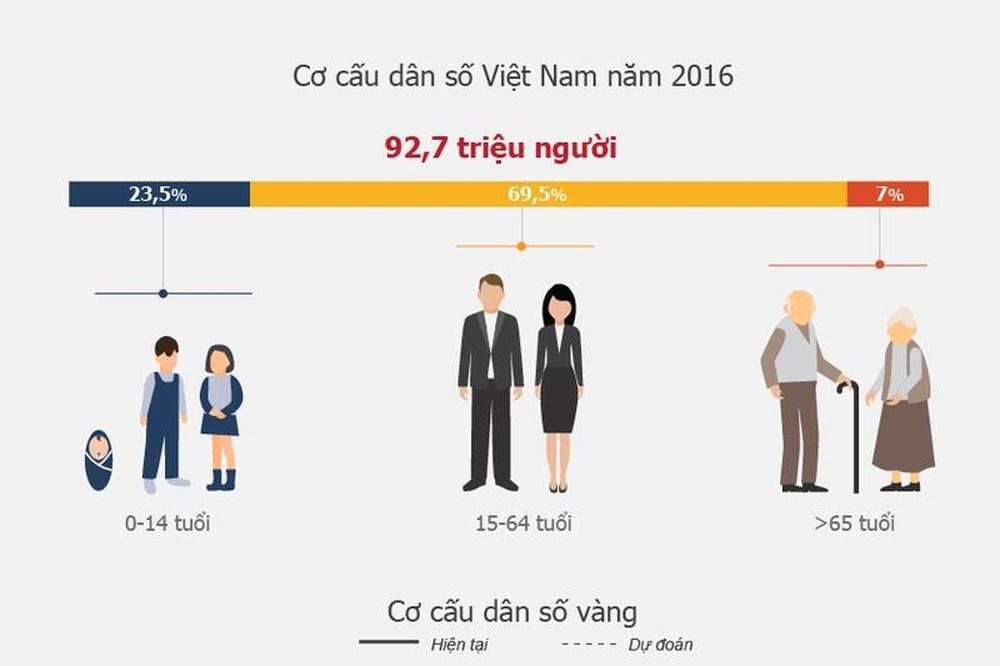 cơ cấu dân số là gì và biểu đồ về cơ cấu dân số tại Việt Nam năm 2016