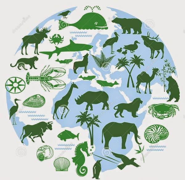 giới sinh vật là gì