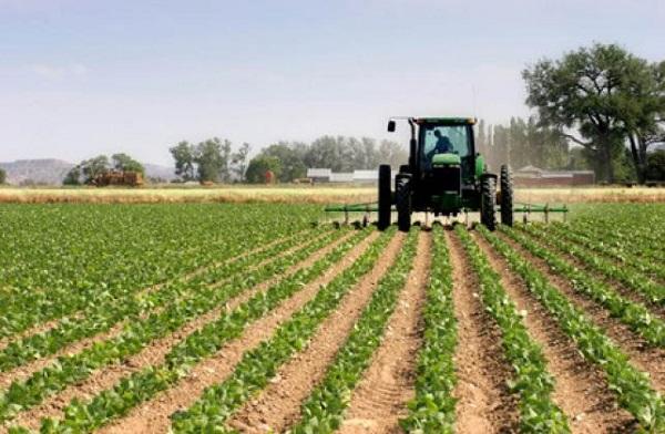 hợp chủng quốc hoa kì là nước có nền nông nghiệp phát triển mạnh