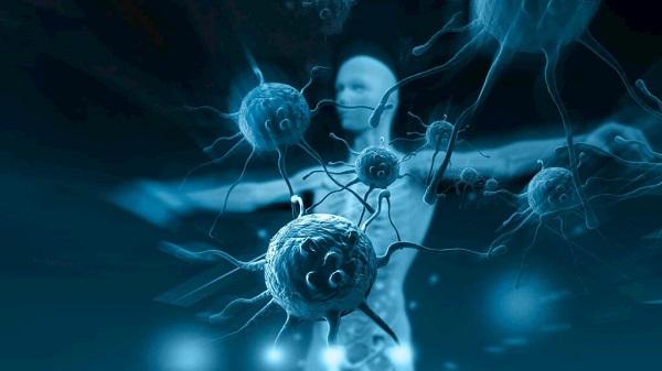 miễn dịch không đặc hiệu có khả năng kiểm soát và loại bỏ được nhiễm trùng