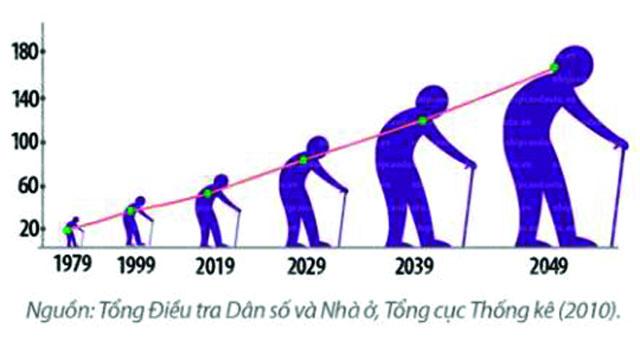 cơ cấu dân số là gì và tương lai già hóa trong cơ cấu dân số