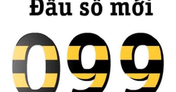 099 là mạng gì