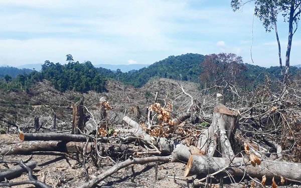 tài nguyên thiên nhiên là gì và vấn đề ô nhiễm nguồn nước