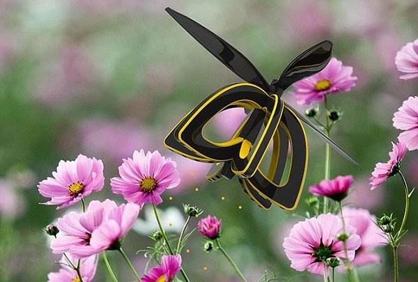 thụ phấn chéo là gì và một số loại cây hoa thụ phấn chéo