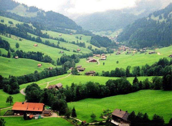 vai trò của cây xanh đối với con người thông qua việc điều hòa khí hậu