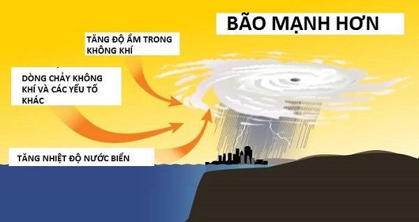bão áp thấp nhiệt đới là gì và điều kiện hình thành bão áp thấp nhiệt đới