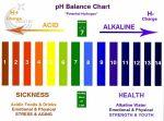 nước alkaline là gì và hình ảnh minh họa