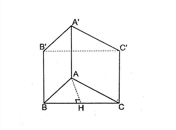 hình lăng trụ đứng có các cạnh bên vuông góc với đáy