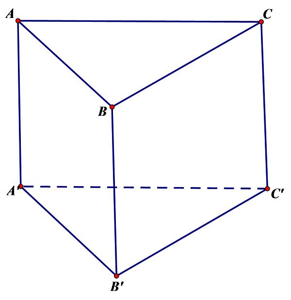 hình lăng trụ đứng có các mặt bên là hình chữ nhật