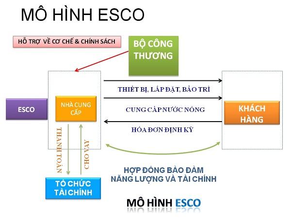 đặc trưng của mô hình esco là gì