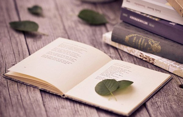 đặc điểm của văn tự sự là gì
