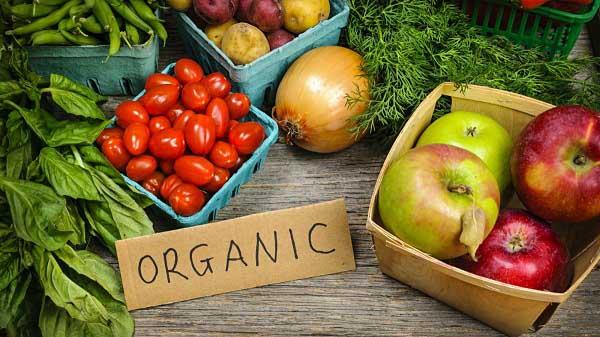 tìm hiểu khái niệm organic là gì