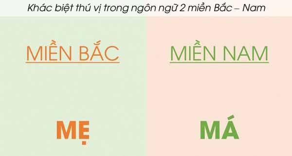 khái niệm từ ngữ địa phương và biệt ngữ xã hội