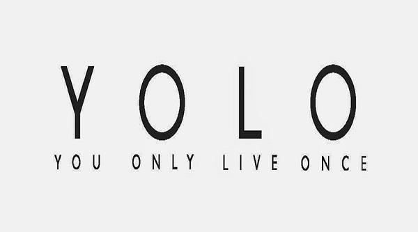 yolo là gì và hình ảnh minh họa