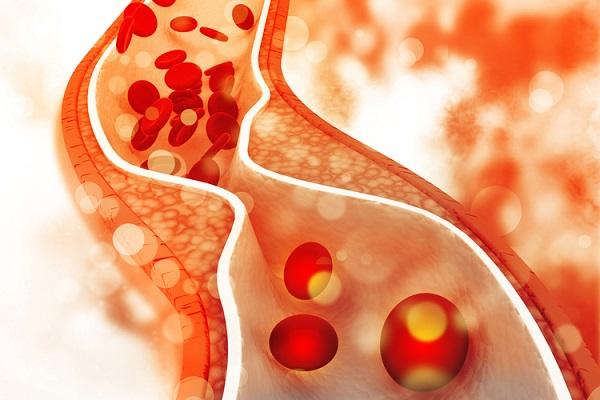 tác dụng của cholesterol là gì