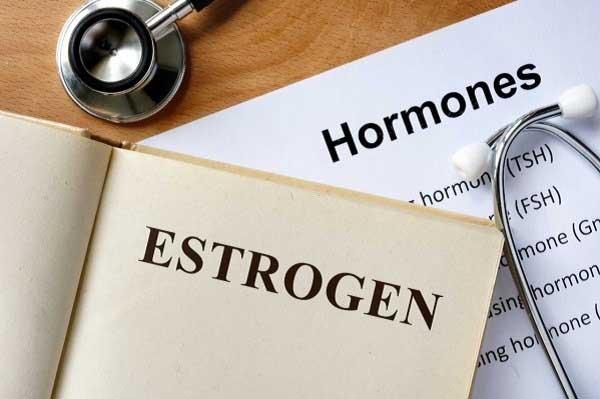 tìm hiểu khái niệm estrogen là gì