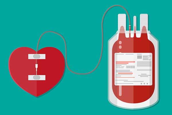 chức năng của máu là gì và hình ảnh minh họa
