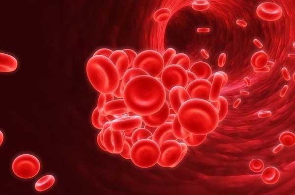 chức năng của máu và chức năng của tiểu cầu trong máu