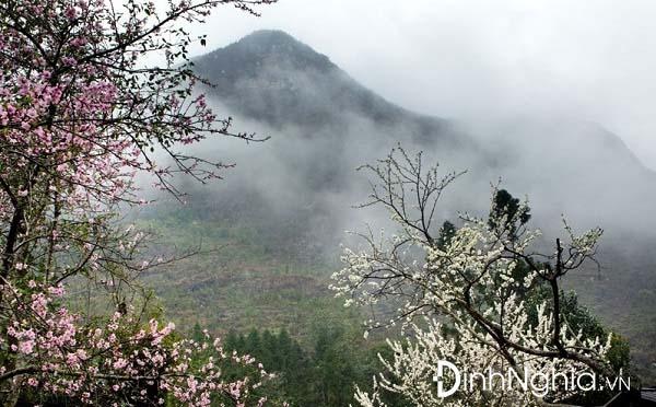 phân tích bức tranh tứ bình trong việt bắc của tố hữu qua bức tranh mùa xuân