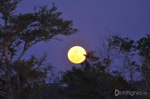 phân tích và cảm nhận về bài thơ ngắm trăng