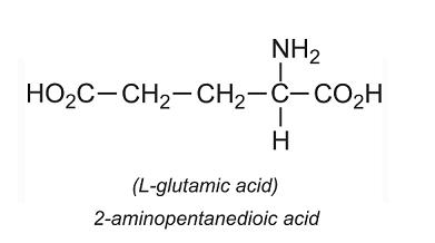 amino axit là gì và cấu tạo của amino axit