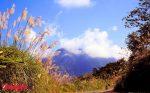 cảm nhận về bức tranh thiên nhiên tây tiến trữ tình và thơ mộng