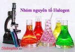 lý thuyết về nhóm halogen