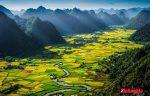 phân tích vẻ đẹp thiên nhiên tây tiến