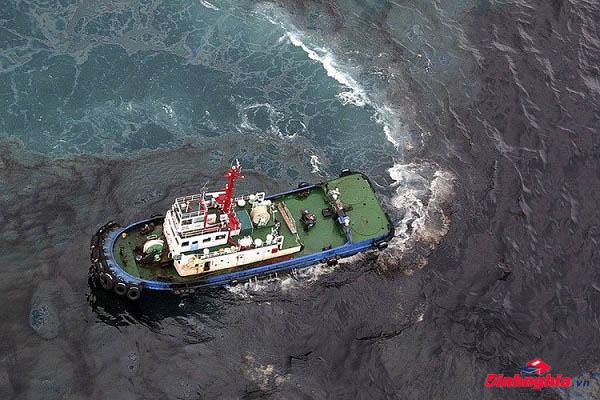 hiện tượng thủy triều đen là gì