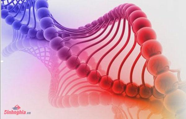 tìm hiểu vi kim tế bào gốc là gì