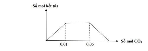 các kiểu đồ thị trong hóa học