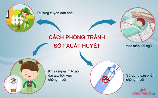 cách phòng tránh sốt xuất huyết