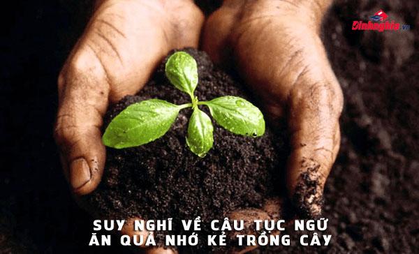 đạo lý tốt đẹp trong bài văn nghị luận ăn quả nhớ kẻ trồng cây